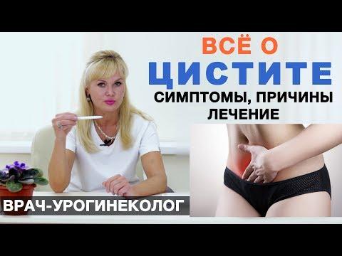 Цистит - симптомы, причины, лечение цистита у женщин. Воспаление мочевого пузыря