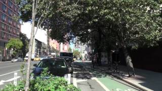 The Green Benefits of NYC Protected Bike Lanes