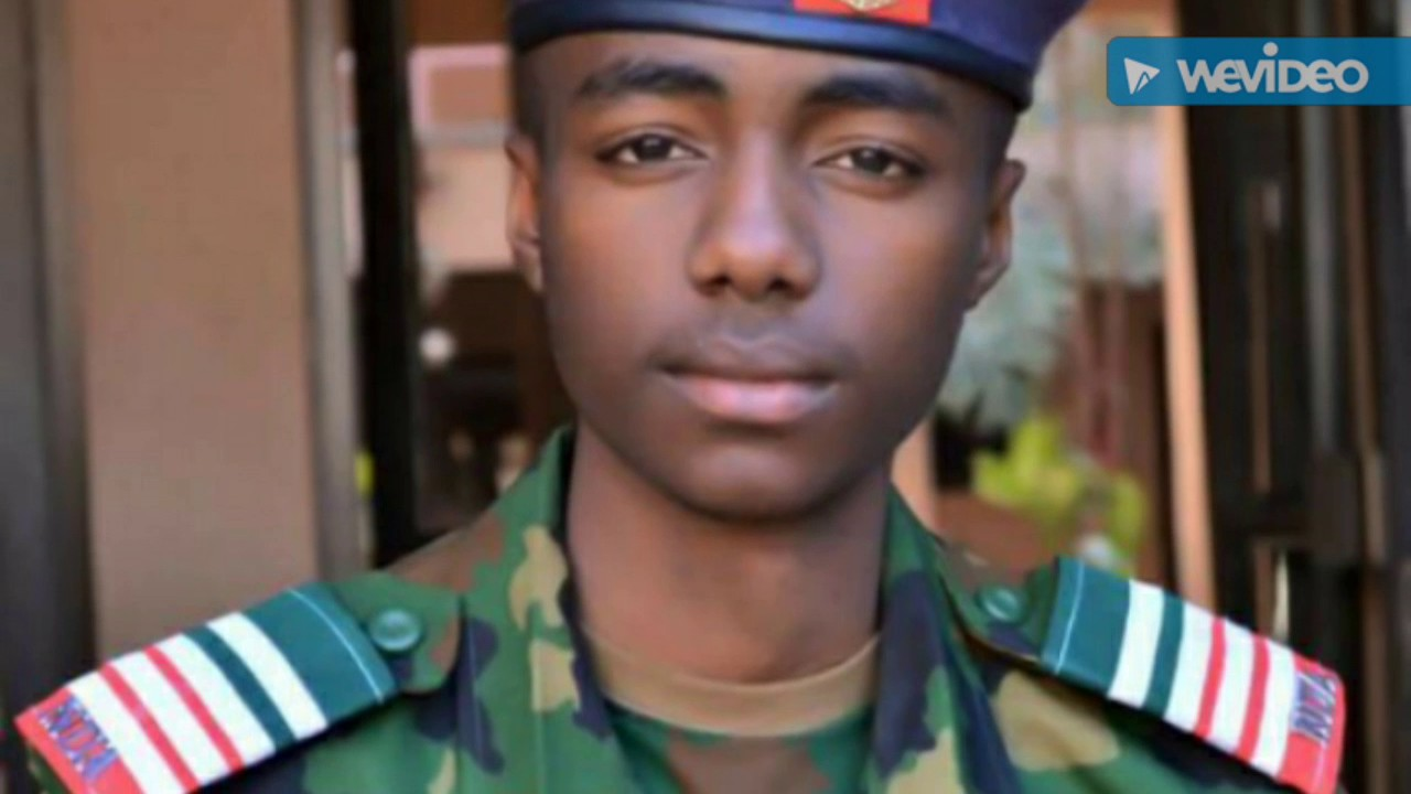 Download Reality of the Nigerian Defence Academy