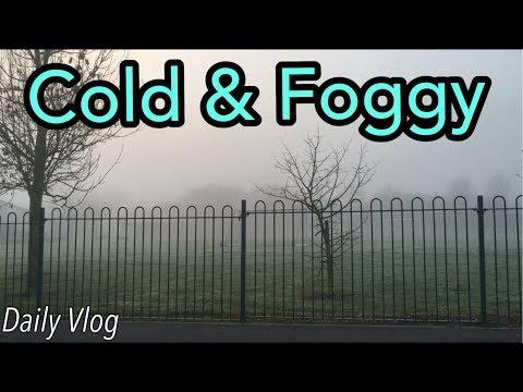 Cold foggy morning | #stevesfamilyvlogs #dailyvlog