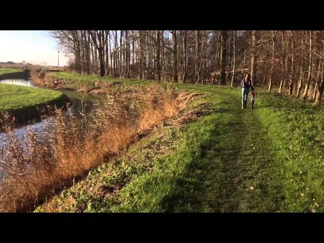 Mijke Smit: Het Flietsterbosk