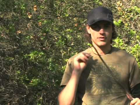 Basic Wilderness Survival Skills : Wilderness Survival: Making an Arrow