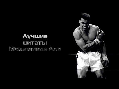 Геннадий Головкин – Канело Альварес ()