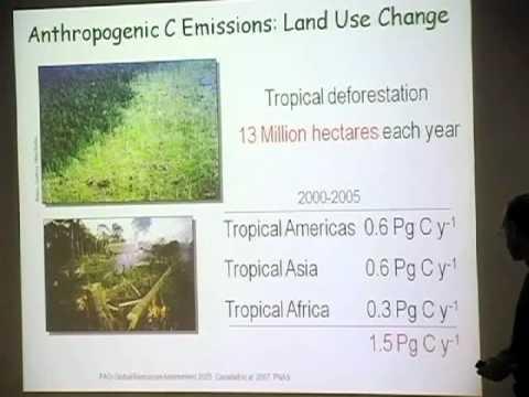 Carbon Emissions: Past, Present & Future