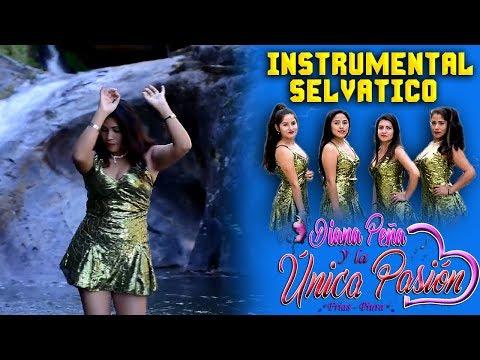 La Unica pasion -  Instrumental  selvatico - PRIMICIA 2018 ► TASAIT PRODUCCIONES