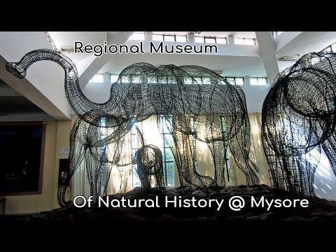 Regional Museum Of Natural History | Mysore Museum | Mysore Tourism Karnataka Tourism