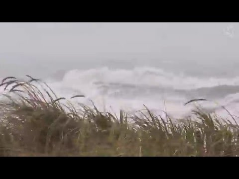 🎧 Hurricane Sound On The Beach - Stormy Rough Ocean, Wave Crashing Ambience And Blizzard Sounds