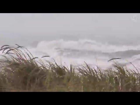 🎧 Hurricane Sound