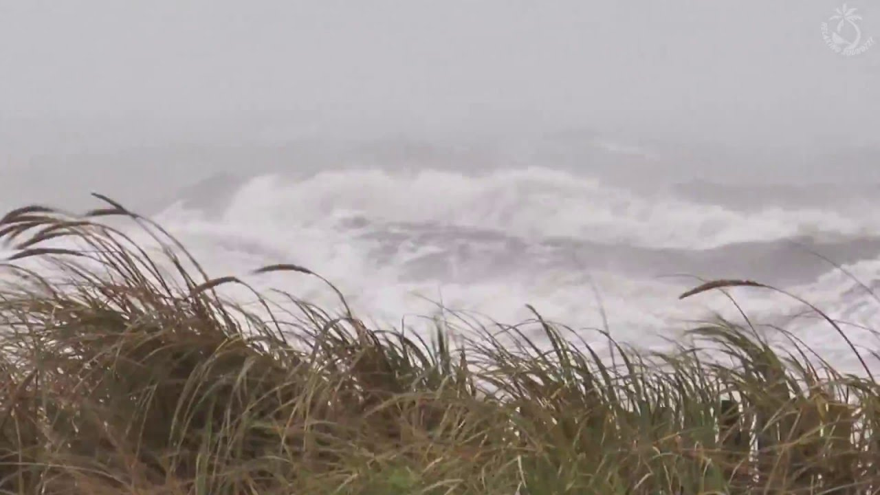 Sounds Of Ocean Waves Crashing On Beach