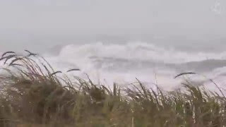 ? Hurricane Sound On The Beach - Stormy Rough Ocean, Wave Crashing Ambience And Blizzard Sounds