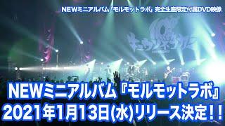 Live Director : 木本 健太 (A-10 Inc.) 2021年1月13日(水) 発売 New Mini Album 「モルモットラボ」 <完全生産限定盤>CD+2DVD VIZL-1780 ¥4900+tax <通常 ...