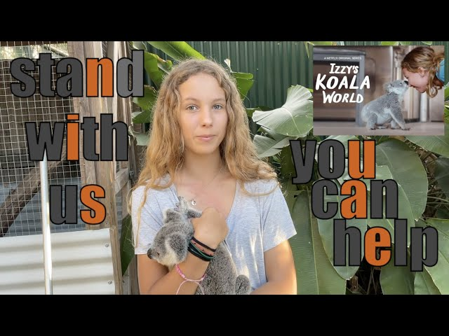 Every 🐨 Koala Counts 🐨 - Izzy Bee of Izzys Koala World tells how can you help the koalas of Gilead