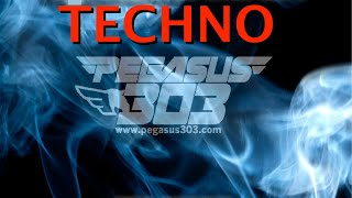 Dub Techno Mix 2013 Pegasus 303 Mix 024 with Mr. Clean Los Angeles