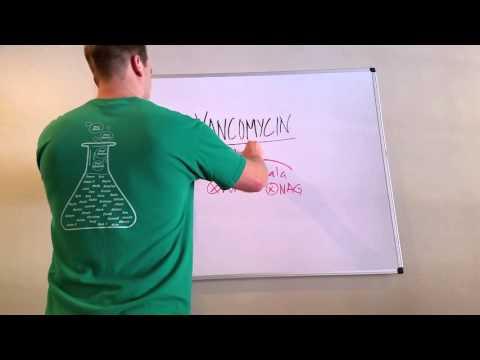 Vancomycin: What You Need to Know
