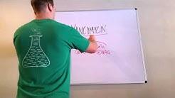 hqdefault - Vancomycin Monitoring In Dialysis Patients