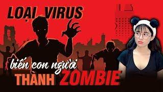BIẾN HÓA ZOMBIE? Những Con Ký Sinh Trùng Này Có Thể Biến Bạn Thành Zombie