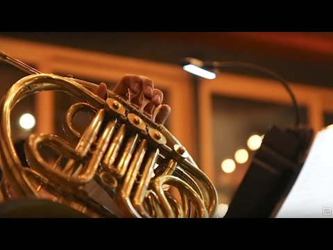 Members of New York Philharmonic perform at Avalon Cafe & Kitchen in Ann Arbor