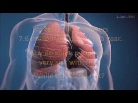 The Crick and Nature Research present: Collaborating to Beat Lung Infections & Asthma