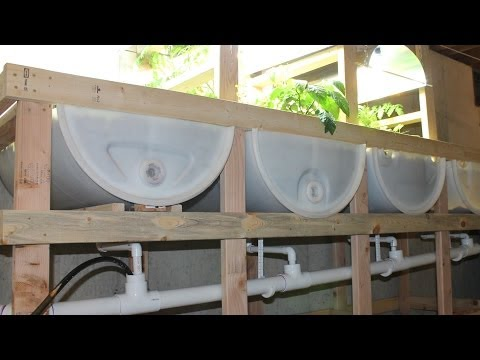 Aquaponics System Design  – Tips and Tricks