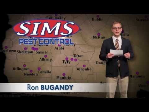 Sims Pest Control / News Spoof Commercial