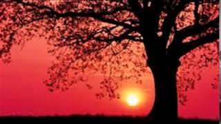 randathani hamza songs(aadirabbin)