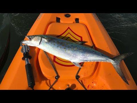 Catching Water Rockets At The Jetty, Kayak Fishing Texas