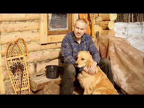 Home Alone with my Dog at the Log Cabin, ASMR Tapping Trees, Off Grid Refrigeration