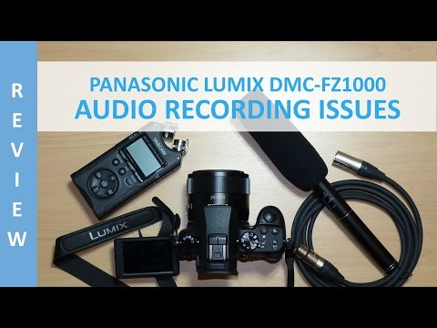 Panasonic Lumix DMC-FZ1000 - Audio Recording Issues (Grinding Noise) and Audio Examples