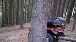 Pracovní čtyřkolka - přibližování dřeva