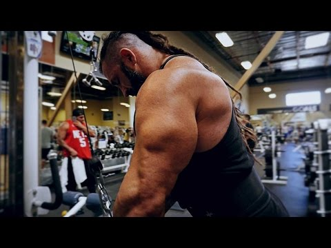 Arm workout | Biceps Workout | Triceps Workout