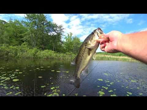 FISHING ORANGE COUNTY NEW YORK