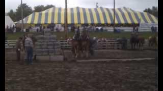 Tire de chevaux St-Gabriel de rimouski 17 500 livres