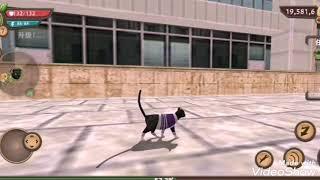 Клип cat sim - Между нами любовь
