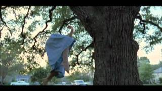 THE TREE OF LIFE Featurette: Cinematographer Emmanuel Lubezki