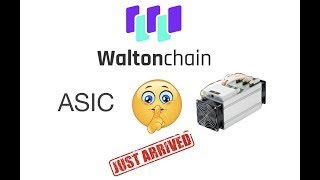 WaltonChain ASIC, Oh Snap WTC Walton coin: Watch out this changes WTCT Mining for good.