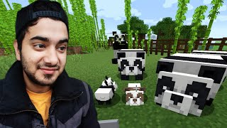 Creating an Island for my Panda Army in MINECRAFT 😍