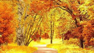 Golden Autumn .......... CHiLL OuT MiX 2017 (NeW)