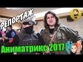 AniMatrix 2017. Что рассказали гости фестиваля! Репортаж от Natsu