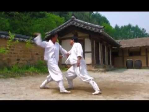 Taekkyeon, A Traditional Korean Martial Art