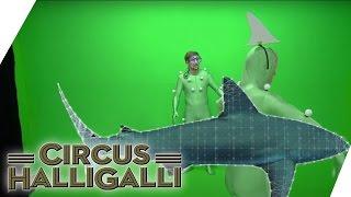 Ist bei Circus HalliGalli alles Fake? - Der mündige Zuschauer