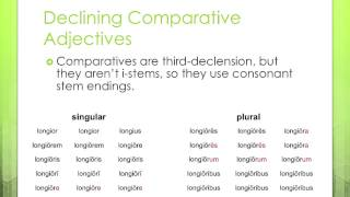 Formation of Latin Comparative and Superlative Adjectives