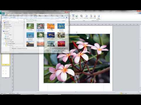 Page Management and Pictures in Microsoft Publisher 2010 (Video 6 of 9)