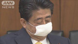 総理「責任は私にある」 黒川氏に退職金で野党批判(20/05/22)