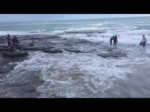 Tourists Thrashed by Giant Wave
