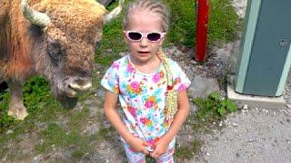 Отдых в Сочи #6 Идем в зоопарк подымаемся высоко в горы детские путешествия с родителями(Отправляемся с Миланой в зоопарк в горы и аквапарк путешествуем и поднимаемся в горы. Больше интересного..., 2016-09-10T04:30:00.000Z)