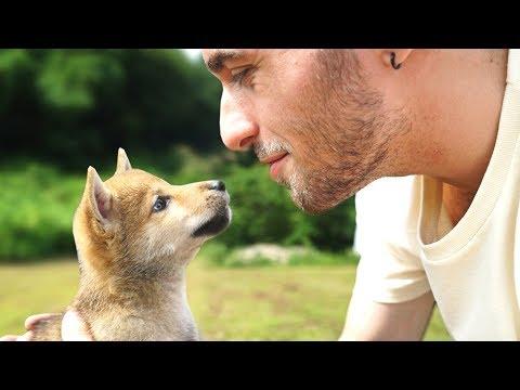 Homme cherche sérieux saison 1 épisode 9 avec apparition de Davidde YouTube · Durée:  21 minutes 45 secondes