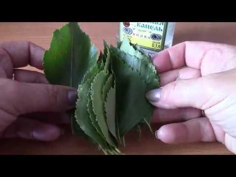 Лечение зуда и грибка кожи в области паха