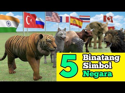 Binatang Ini Menjadi Kebanggaan Simbol Sebuah Negara | Lambang Negara