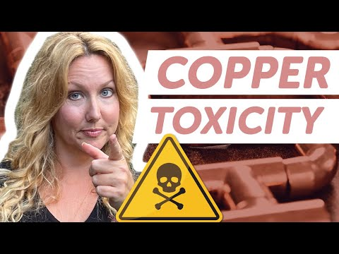 #90: Most Health Issues Stem from Copper Dysregulation PART 1 with Morley Robbins