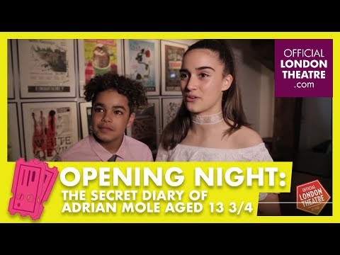 Opening night: The Secret Diary Of Adrian Mole Aged 13 34 The Musical